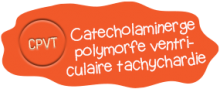 Catecholaminerge polymorfe ventriculaire tachychardie