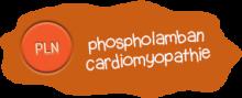 Phospholamban cardiomyopathie
